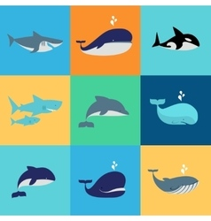 set of whale dolphin and shark icons vector image
