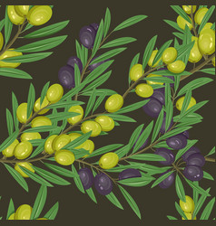 branches with leaves and olive berries vector image