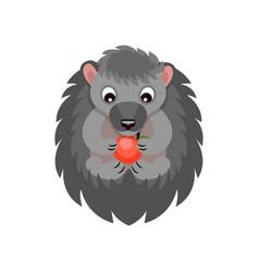 cute hedgehog eating red apple sweet gray animal vector image