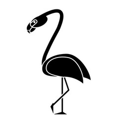 Flamingo bird tropical pictogram vector