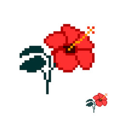 Flower in the style of pixel art red hibiscus vector