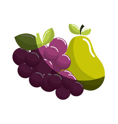 Grape and pear fruits icon vector