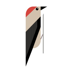 minimalistic image of a woodpecker vector image