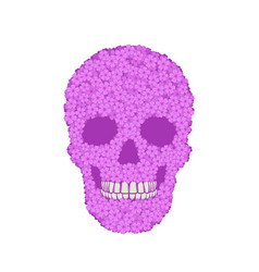 stylized violet verbena skull on white background vector image