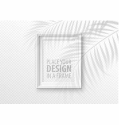 transparent shadow overlay effect mockup vector image