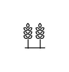 wheat crop allergy icon vector image