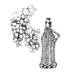 Set of grapes wine with hand-drawing style vector image