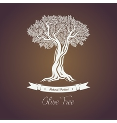 Natural olive oil tree logo for olive grove vector image vector image