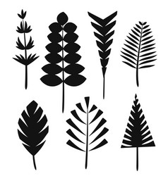 the silhouette leaves of the trees and grass vector image