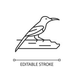 Crimson sunbird linear icon vector