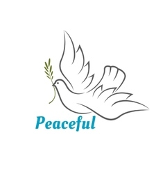 Flying white dove with olive branch vector image