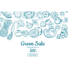 handdrawn fruits and vegetables horizontal vector image