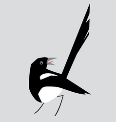 minimalistic image of magpie3 vector image