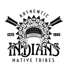 native american indians apache tribe vector image