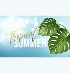 tropical summer lettering on background from vector image