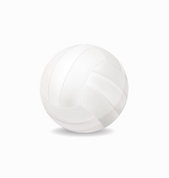 White volleyball vector