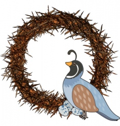 animal alphabet quail vector image vector image