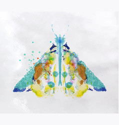 monotype vivid moth vector image