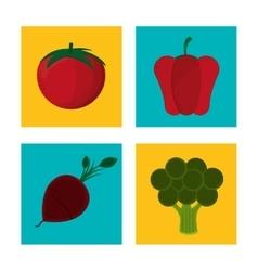 Set fresh nutritious vegetables vector