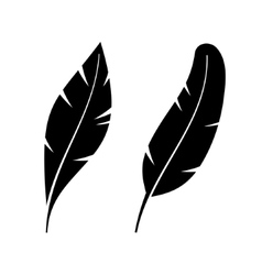 Two Icon Style Feathers vector