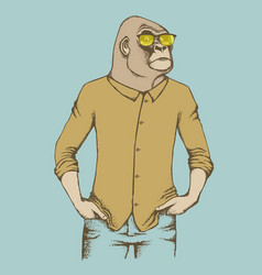 Monkey gorilla vector