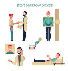 flat marrow bone donation concept set vector image vector image