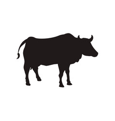 Bull farm animal vector