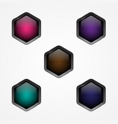 button hexagon vector image