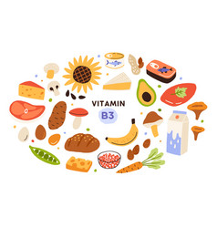 Collection vitamin b3 sources food containing vector