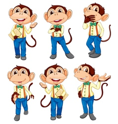 Different positions of a monkey vector image