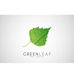 Green leaf symbol logo Creative ecology logo vector image