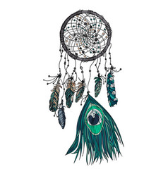hand drawn ethnic dreamcatcher vector image