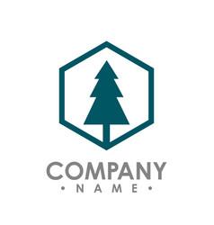 hexagon pine tree outdoor travel green silhouette vector image