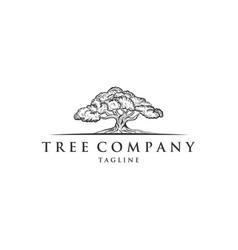 oak tree concept logo template vector image