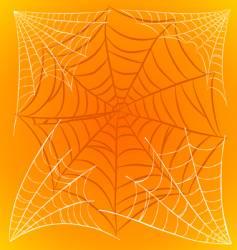 Spider webs vector