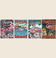 tropical vintage colorful posters set vector image