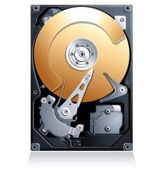 Computer Hard disk drive HDD vector image