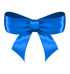 blue silk ribbon bow vector image