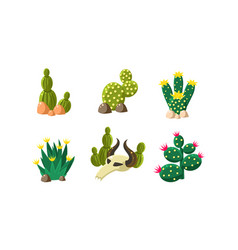 cactuses and buffalo skull set design elements of vector image