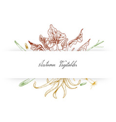 hand drawn of autumn vegetables kohlrabi and lemo vector image