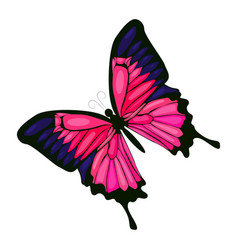 Pink butterfly icon on a white background vector