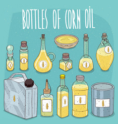 set of containers with corn oil vector image