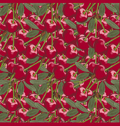 vintage cherry seamless pattern vector image