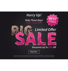 Poster Big Sale Limited Offer vector image vector image