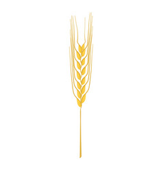 Cereal plant stalk icon cartoon style vector