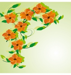 abstract background with orange flowers vector image
