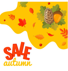 autumn sale discount banner with pine cone acorn vector image