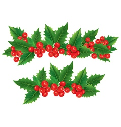 Christmas garland holly berries vector