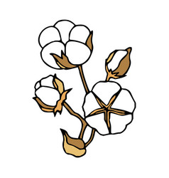 Cotton stem in doodle style with stroke vector