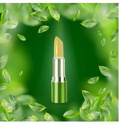 Eco green lip balm vector